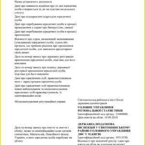 Інформація про юр.особу 3